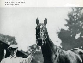 https://www.google.com/search?q=seabiscuit+racehorse&biw=1680&bih=935&source=lnms&tbm=isch&sa=X&ved=0ahUKEwio6bPB9_bQAhWCQyYKHcX7D8sQ_AUIBigB#tbm=isch&q=man+o+war+racehorse+stallion&imgrc=6AH5J15tSQMHSM%3A