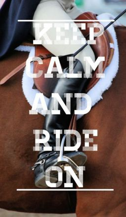 0118cda583f3e2c263af0d03162683c5--english-horseback-riding-english-riding